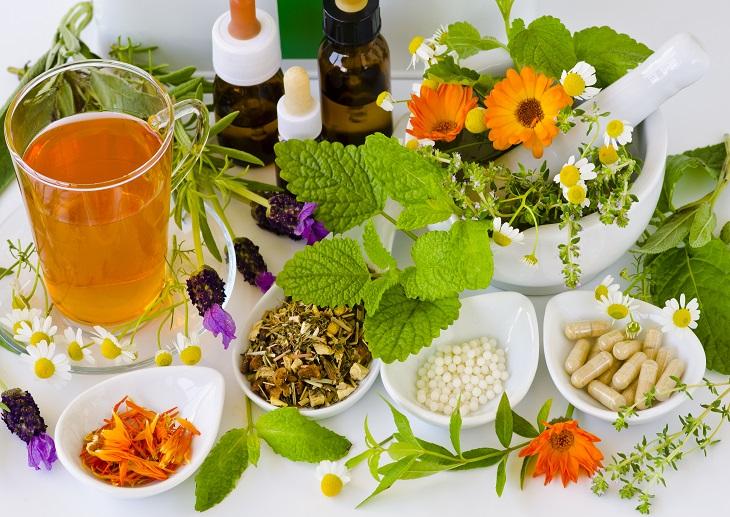 5 plantas medicinales y sus usos