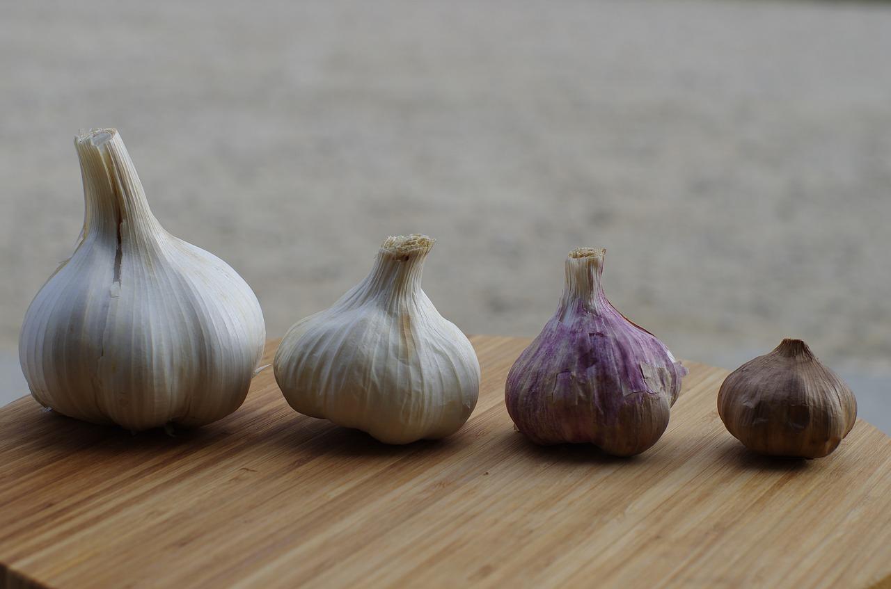 ¿Cómo cultivar ajos?