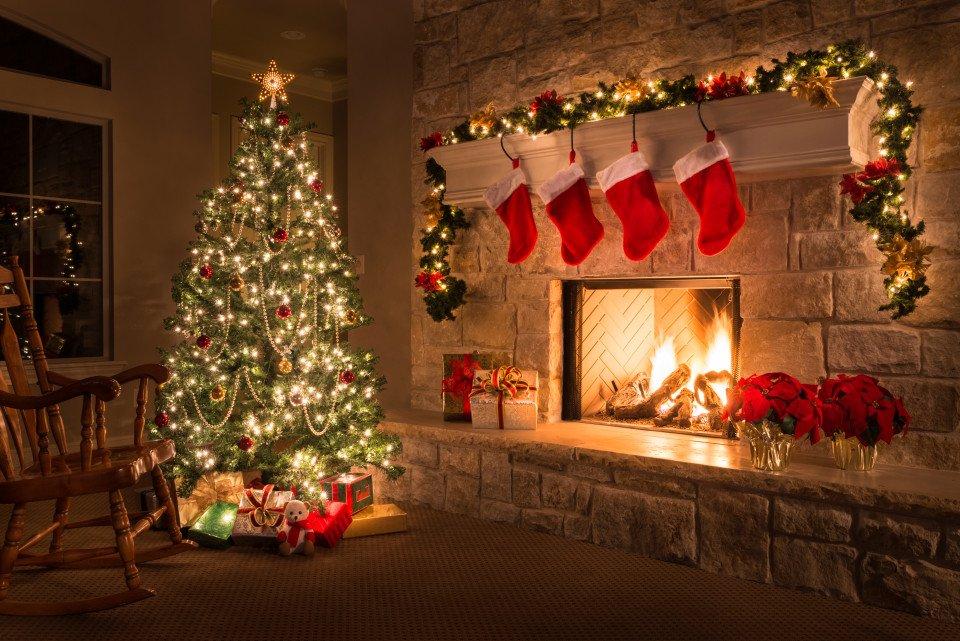 Las 10 plantas típicas de Navidad y sus cuidados